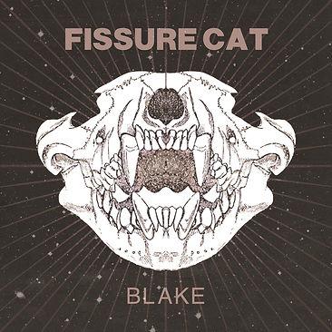Fissure Cat Blake Cover.jpg
