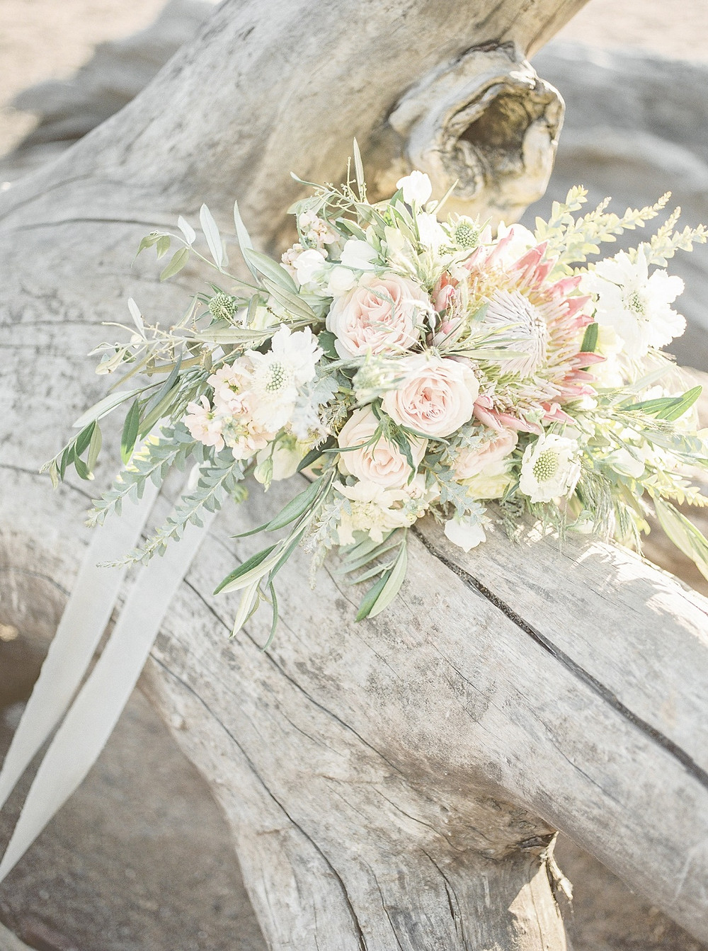 studio bloom iowa beach inspired bridal bouquet of king protea, roses, and olive in blush and peach