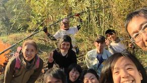 40人でワイワイ 美しい竹林を一日で創ろう!開催しました♪