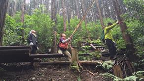 森と踊る木こり皮むき体験会 2018@高尾 vol.1