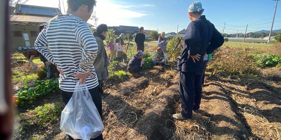 3/1『自然農とパーマカルチャー講座』無料オンライン説明会