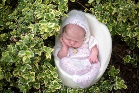 Newborn-Photo-Shoot-Outdoor-Posed-Photog
