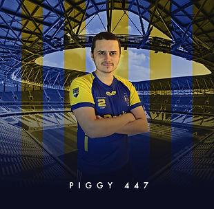 eAthlete Piggy 447.JPG