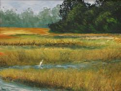 My Marsh
