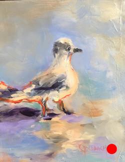 """""""Birdie II"""""""