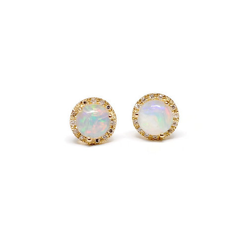 Opal and Diamond Halo Stud Earrings in 14k Yellow Gold