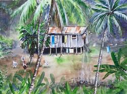 A Day In Fiji