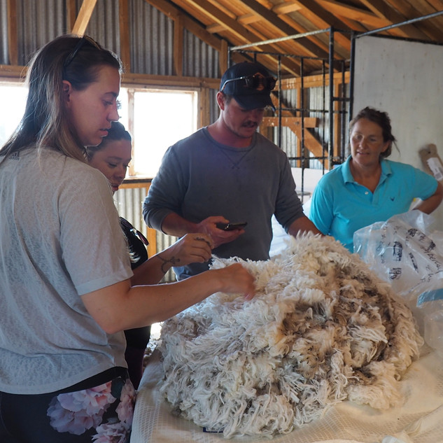 17 mircon wool fleece