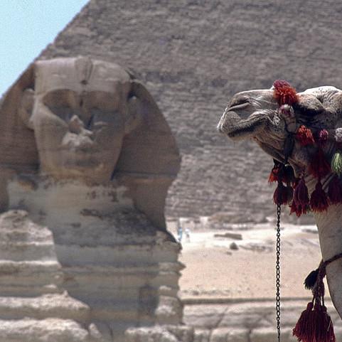 Egypte expo 18.jpg