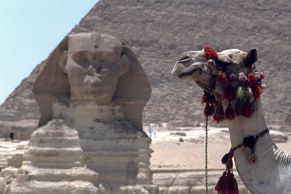 Sphinx, Gizeh