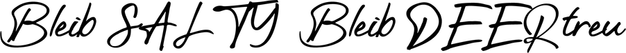 BleibSALTY_Schriftzug.png