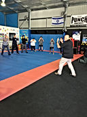 Fight Stance JPG.JPG