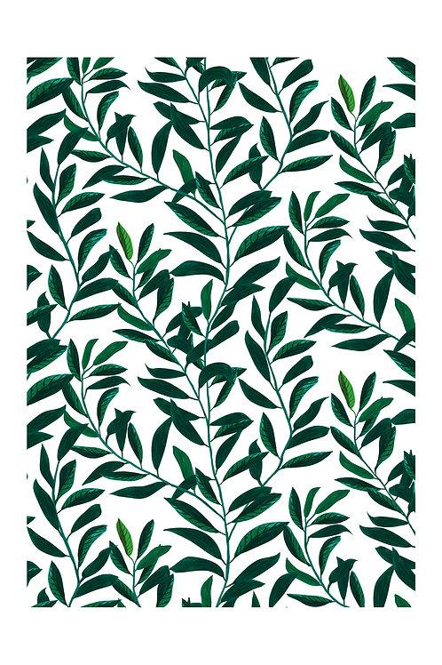 Poster Blätterranke