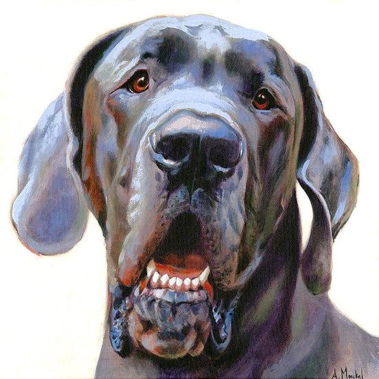 EXTREME CLOSE-UP, Custom Acrylic Pet Painting on Canvas