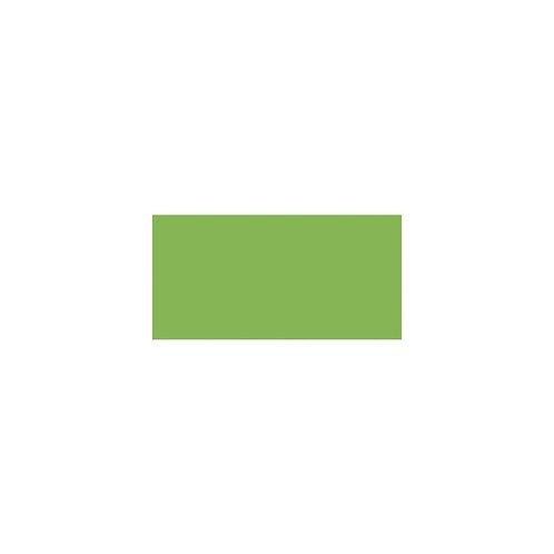 LIGHT GREEN - ZIG CLEAN COLOR BRUSH PEN
