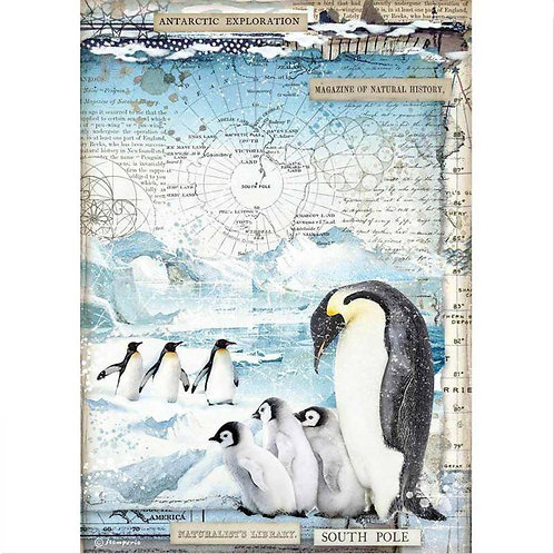 Stamperia A4 Rice Paper - Penguins