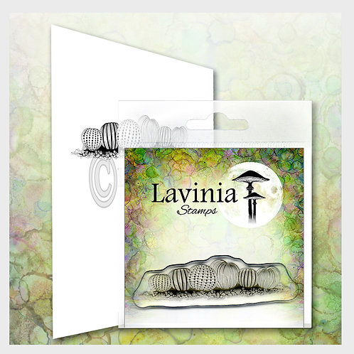 Urchins Stamp by Lavinia