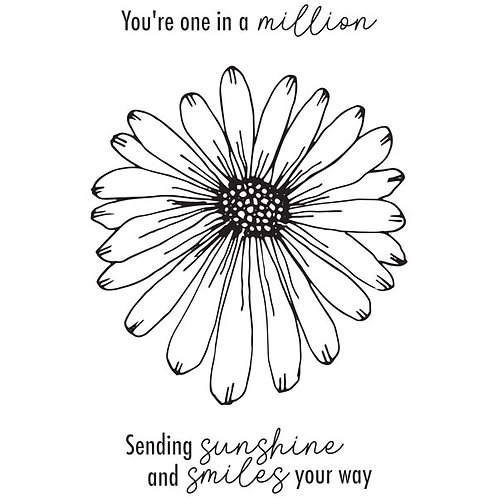 Darling Daisy Stamp by Julie Hickey