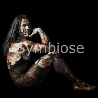 """Symbiose est une transgression. Une inversion des codes. L'homme est nu, mais il enveloppe le décor, s'en habille l'âme et s'ouvre sur des transparences imaginaires.   Il sait vous interpeler du regard. Symbiose fonctionne comme un miroir sans tain. Vous la cherchez dans la forme, la lumière, la couleur, la matière. Le modèle joue son rôle, sa nudité en symbiose avec les éléments et son regard en symbiose avec celui de son mentor. Il est objet, sujet, silencieux et omniprésent. L'artiste se livre à travers les compositions nouées et les ajouts rugueux posés sur sa peau."""" écrit de Didier Bouillot, 2013"""