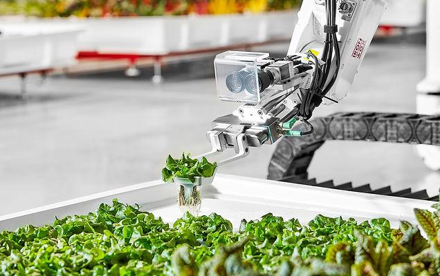 food%20technology%202019_edited.jpg