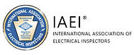 IAEI_Logo.jpg