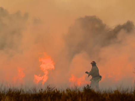 Negative Health Impacts of Wildfire Smoke: What we can learn from firefighter data