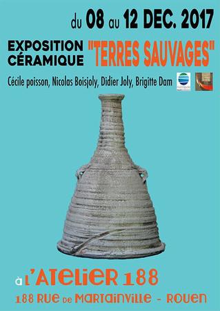 """Exposition """"Terres Sauvages"""" à ROUEN au 188"""