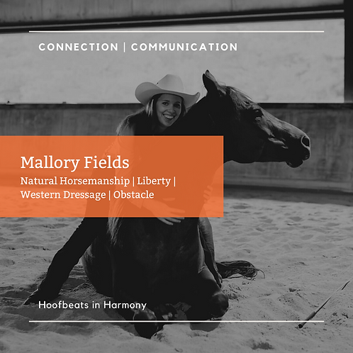 Mallory Fields Video Review