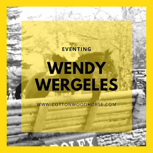 Wendy Wergeles Video Review