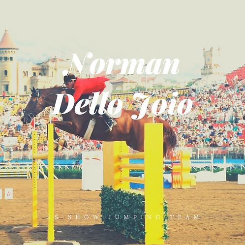 Norman Dello Joio Video Review