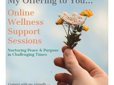 Online Wellness Support Sessions