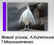 Фотовыставка «Живой уголок»