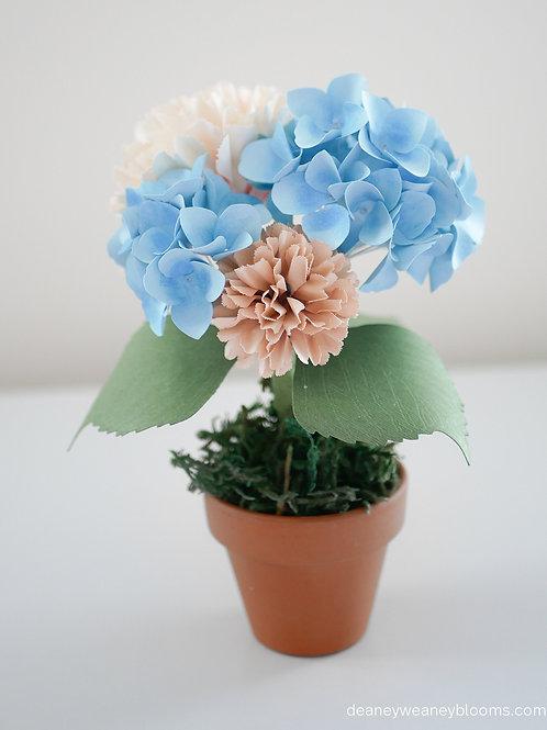 Carnation and Hydrangea pot