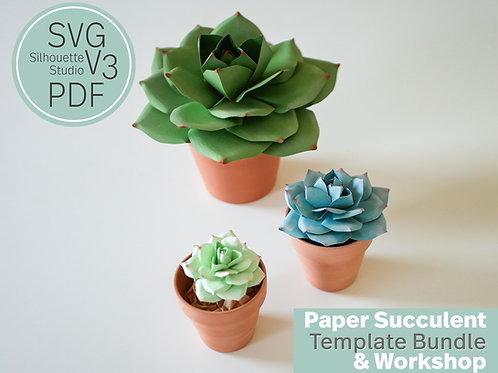 Paper Succulent Workshop