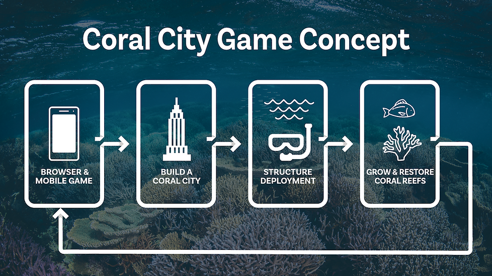 Coral City Infographic.png