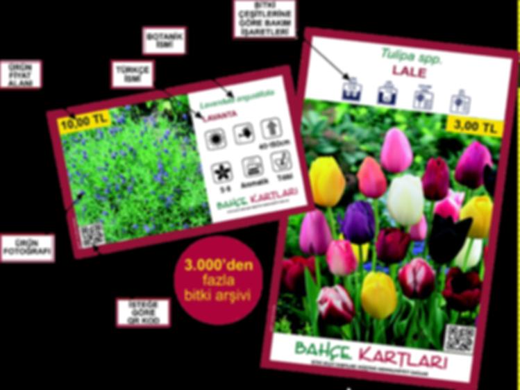 bahçe kartları resim.png