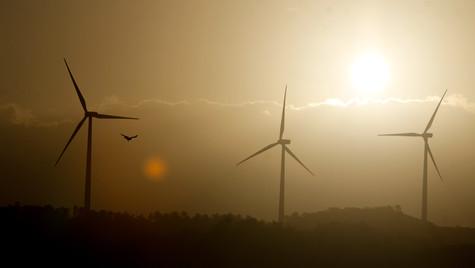 Pillila Wind Farm