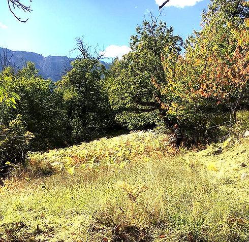 De la Forêt aux Hommes Ent. Lattanzi Giusto : Paysagiste pour entretien de jardin ( débroussaillage ) dans les Alpes-de-Haute-Provence, Alpes-Maritimes ou le  Var.