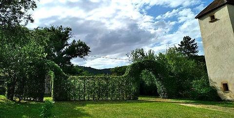 DANDROBATE: Entretien de jardin et taille de haies près de Rouen en Seine-Maritime (76)
