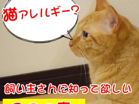 猫好きの猫アレルギー