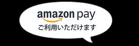 Amazonペイ.png