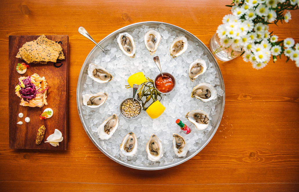 oysters from above.jpg
