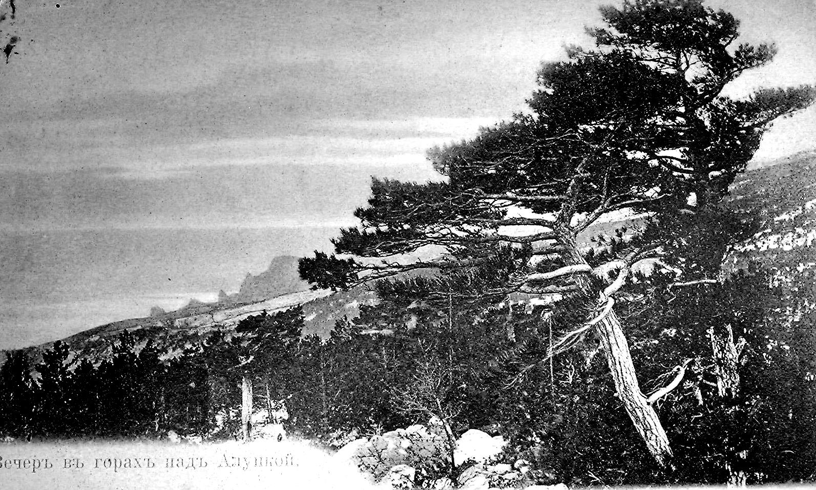 Горы над Алупкой 02.JPG
