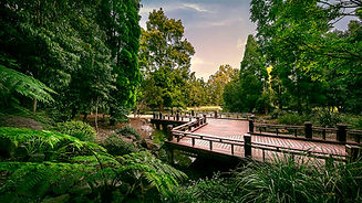 1024px-Nerima_Gardens_Boardwalk.jpeg