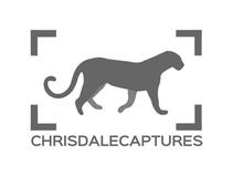 Chris Dale Captures - Logo Design