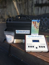 BioPulse Ionic Detox Foot Spa