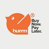 HUMMM.png