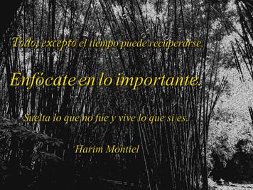 """""""Anímate a existir viviendo cada día con el corazón."""" Harim Montiel"""