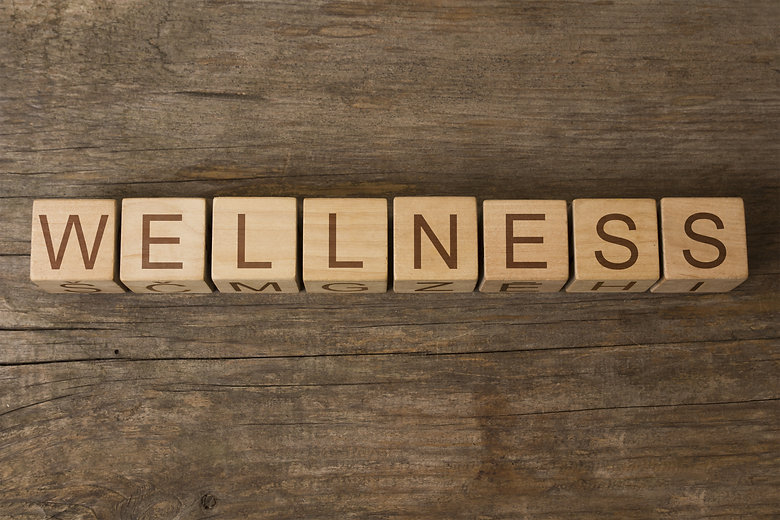 WELLNESS word in vintage wooden blocks.j