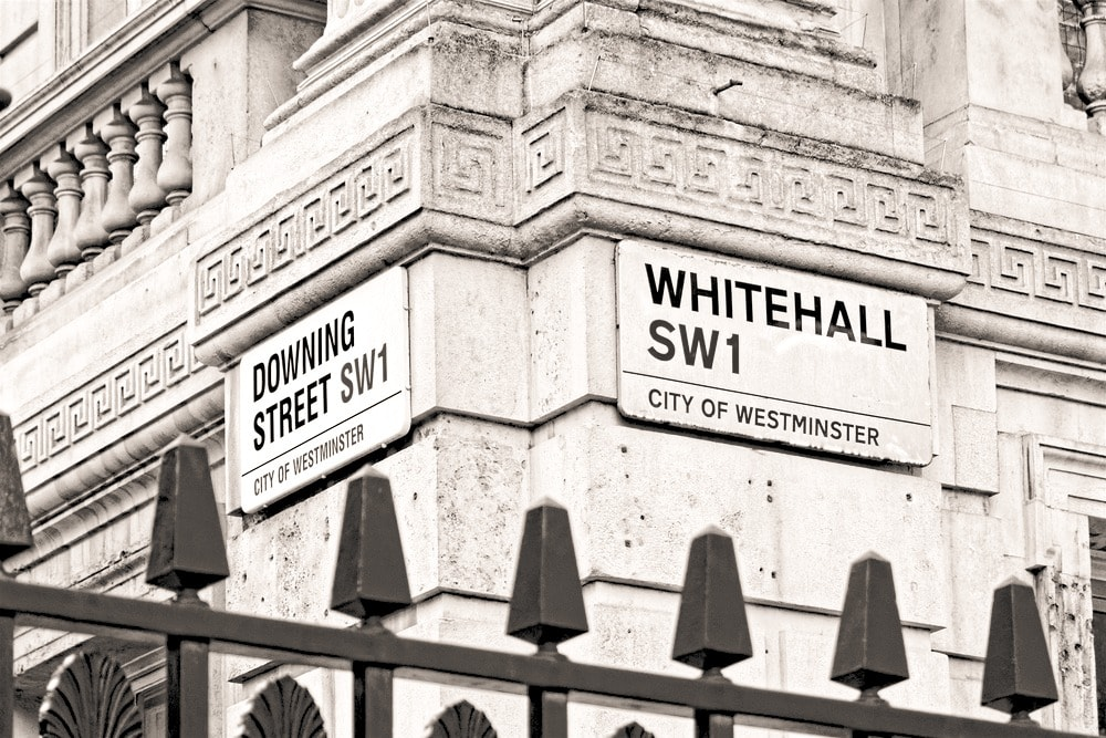 Consultancy - local government